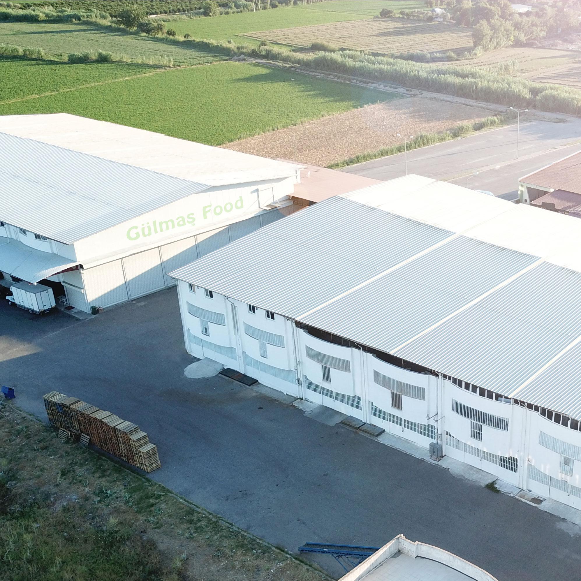 gulmas-fabrika